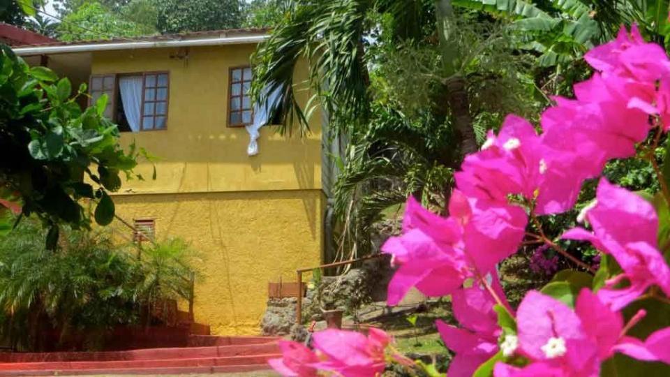"""Cannabis Urlaub """"La Familia Guest House and Natural Farm""""La Familia Natural Farm and Resort ist ein freundliches, italienisch geführtes Gästehaus mit 5 Zimmern direkt an der Hauptstraße in Long Bay, La Familia ist auch eine Natural Farm, auf der die besten sakramentalen Jamaika Ganja Sorten angebaut werden.https://www.cannabisurlaub.com/hotelangebote/la-familia"""